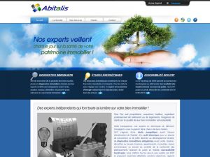 expertise, diagnostic immobilier, audits