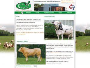 insémination artificielle de taureaux